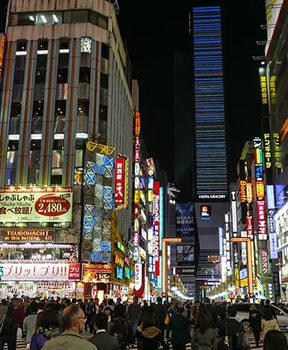 tokyo gate kabukicho - TRIP REPORT - Christmas and New Year in Asia